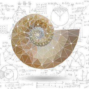 هنر ریاضی